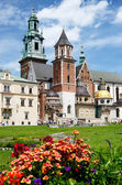 Royal Archcathedral Basilica of Saints Stanislaus and Wenceslaus on the Wawel Hill, Poland — Stock Photo