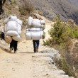 Two sherpa porters carrying heavy sacks in Himalayas,Nepal — Stock Photo