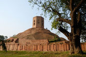 Chaukhandi Stupa in Sarnath with octagonal tower,India — Stockfoto