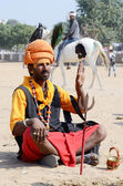 Sadhu,holy man perform at annual camel fair,Pushkar,Rajasthan,India — Stock Photo