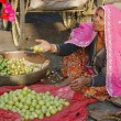 Stock Photo: Old rajasthani womselling fruits at market during annual camel fair holiday in Pushkar,Rajasthan,India