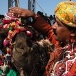 Camel and his owner took first place at camel decoration competition at camel mela in Pushkar, Rajasthan, India — Stock Photo #37754545