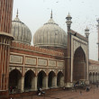 Tourists visiting Masjid-i Jahan-Nummosque,Old Delhi,India — Foto de stock #38769779