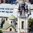 Old Church in Lvov,Ukraine.View from city hall — Stock Photo