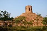 Holy buddhist Chaukhandi Stupa with tower in Sarnath,India — Stock Photo