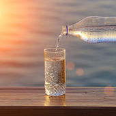 Bottle and a glass of clean water — Stock Photo