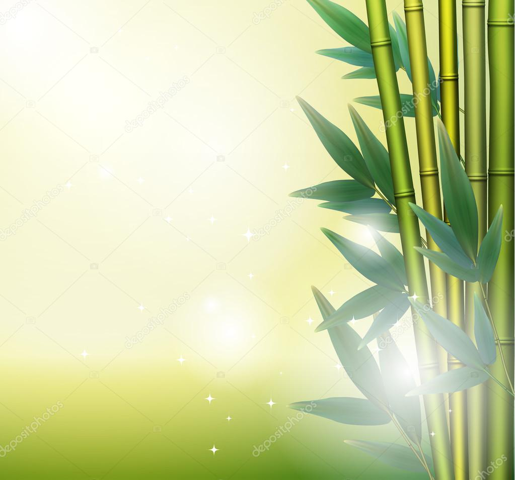 Glowing bamboo background, vector illustration — Stock Vector #12684981