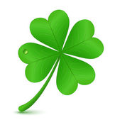 Four leaf clover. St. Patrick's day symbol — Vector de stock