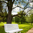 图库照片: Beautiful white bench in public park