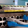 Stock Photo: Network switch and patch cables