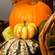 Autumnal basket. Halloween — Stock Photo