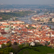 Red roofs of prague — 图库照片