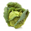 Ripe savoy cabbage isolated on white background — Stock Photo