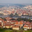 Red roofs of prague — Stock Photo #29895375