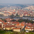 Red roofs of prague — Stock fotografie #29895375