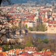 Red roofs of prague — Stock fotografie #29895463