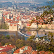 Red roofs of prague — 图库照片 #29895465