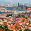 Prague's roofs. Czech Republic. Prague Castle. St Vitus Cathedral — Stockfoto #29895627