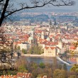 Red roofs of prague — Stock Photo
