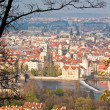 Red roofs of prague — Stock fotografie #29895667