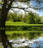 Reflexión de valle montaña hermosa sobre la superficie del lago — Foto de Stock