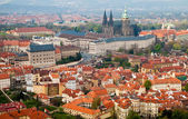 Prague's roofs. Czech Republic. Prague Castle. St Vitus Cathedral — Stock Photo