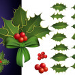 christmas holly — Stock Vector