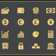 Financal icons set — Stock Vector #49513141