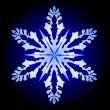 Vector snowflake — Stockvectorbeeld