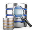 Database with Magnifier — Stock Photo