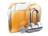 Secure files. Folder with Key. — Stock Photo