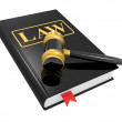 Legal gavel and law book — Stock Photo #4956730
