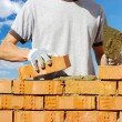 Bricklayer — Stock Photo #19279247