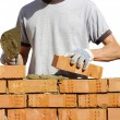 Bricklayer — Stock Photo #19748997
