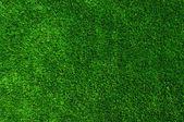 Pelouse de texture vert — Photo