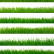Green grass — Stock Photo #28630039