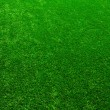 Texture green lawn — Stock Photo #32398165