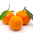 Mandarin on white — Stock Photo