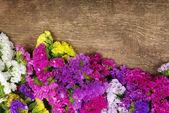 Flor na madeira — Fotografia Stock