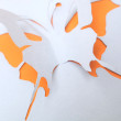 Butterfly paper — Stock Photo