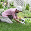 Young woman with hoe working in the garden bed — Stock Photo #13363851