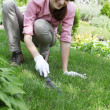 Young woman with rake working in the garden bed — Stock Photo