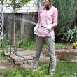 Stock Photo: Young woman watering the garden bed