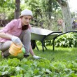 Young woman watering the garden bed — Stock Photo #13363937