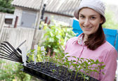 Woman with seedlings in the garden — Stock Photo