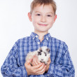 Royalty-Free Stock Photo: Young boy with guinea pig