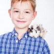 Young boy with guinea pig — Stock Photo