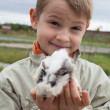 Young boy with guinea pig — Foto de Stock