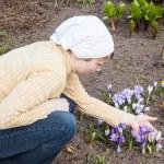 Gardening concept — Stock Photo #26810777