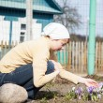 Gardening concept — Stock Photo #26810779